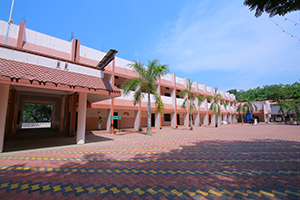 St.mary's college